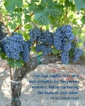Red Grape Vine with Quote