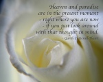 White Rose with Quote