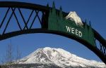 Mt. Shasta from Weed, CA
