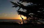 Monterey Sunset and Cypress Trees