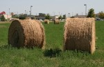 Large Round Hay Bales in City Lot
