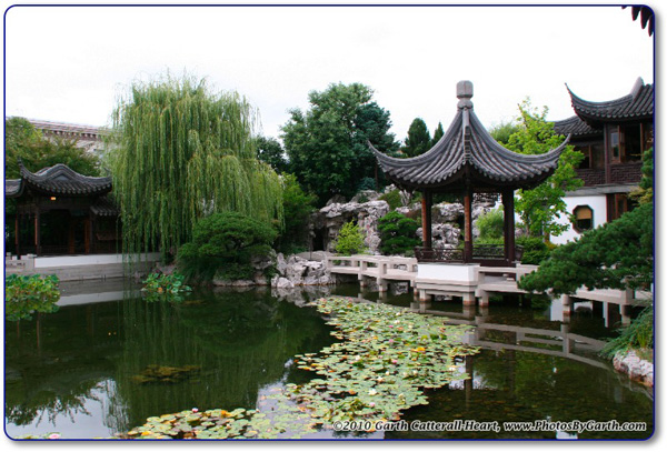 Koi pond and pagoda at the Lan Su Chinese Gardens.